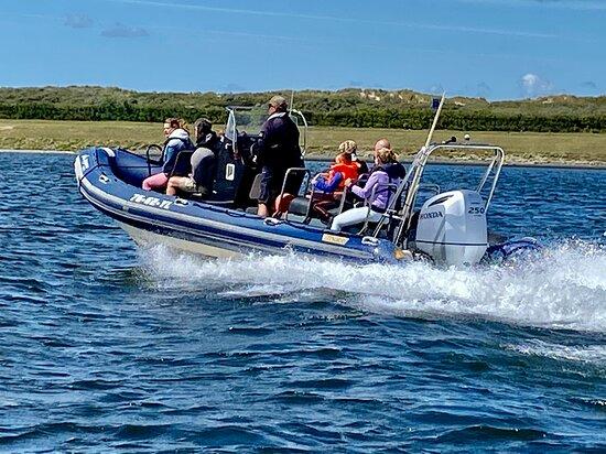 Dolphin Events RIB-Adventure