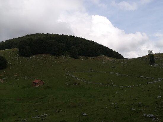 Malga Fossa di Sarone