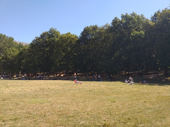 Parco La Pinetina