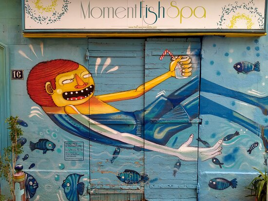 Moment Fish Spa