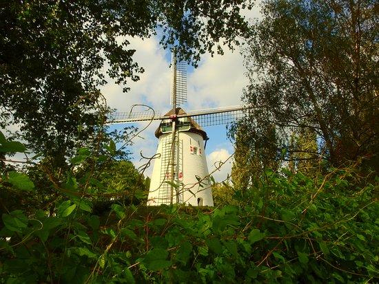 Windmill Keeken