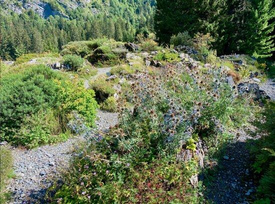 Le Jardin alpin de Pont de Nant La Thomasia