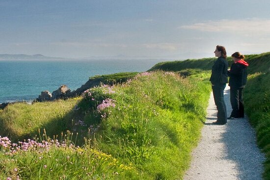 Guided Coastal Walking Tour from Killiney to Dun Laoghaire