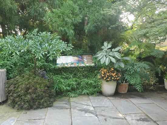 Wonderful Beautiful Garden