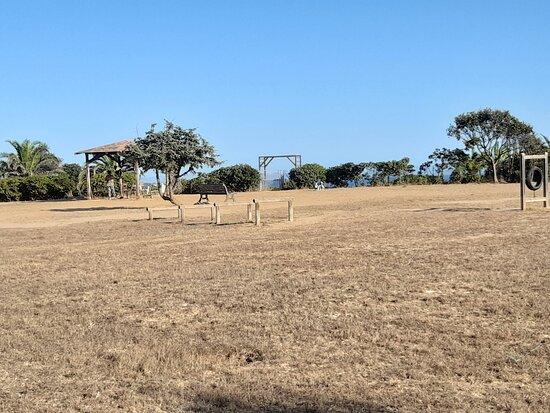 Parco Quattrozampe
