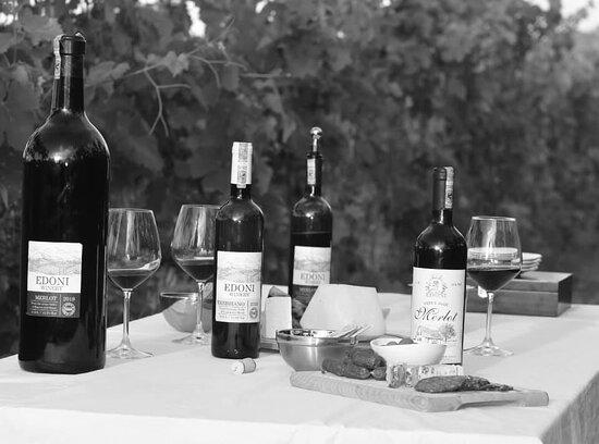 Kucove, Αλβανία: During wine tasting