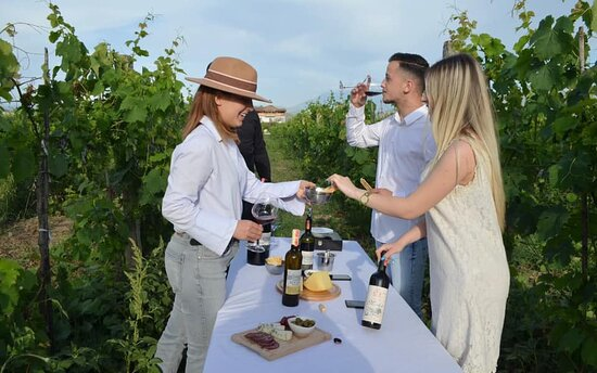 Kucove, Αλβανία: Finger food and wine in the vineyard