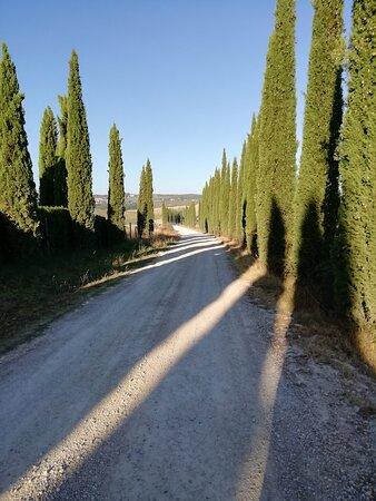 Ville di Corsano-billede