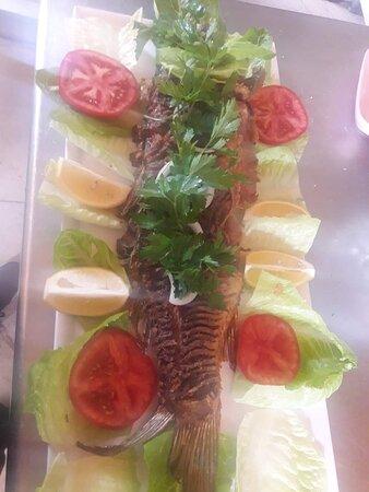 Lezzetli bir sazan balığına ne dersiniz?