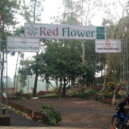 Bukit Red Flower Puspo