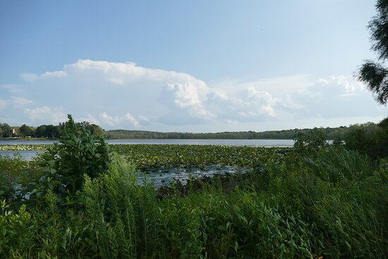 Bass Lake Preserve
