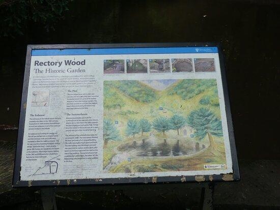 Rectory Wood & Field