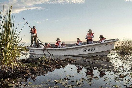 6-Day Ibera Marshlands & Iguazu Falls Luxury Tour