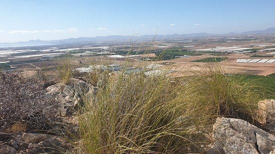 San Cayetano Photo