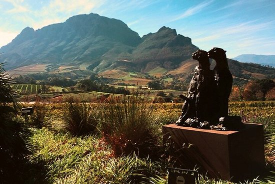 Cape Town - Art and Cuisine - Full Day ...