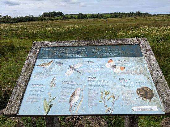 Cors Bodeilio National Nature Reserve