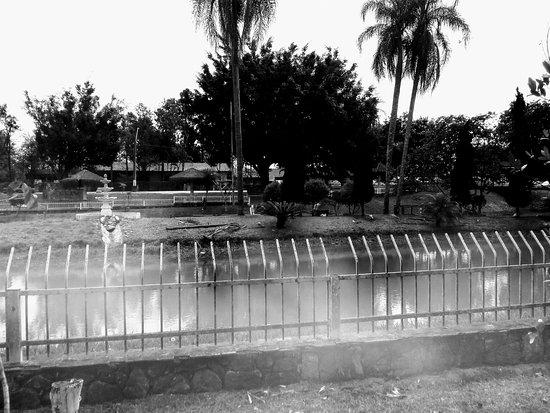 Parque Ecológico Mário Do Canto