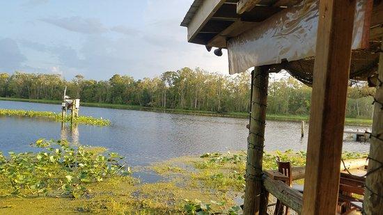 View of Julington Creek