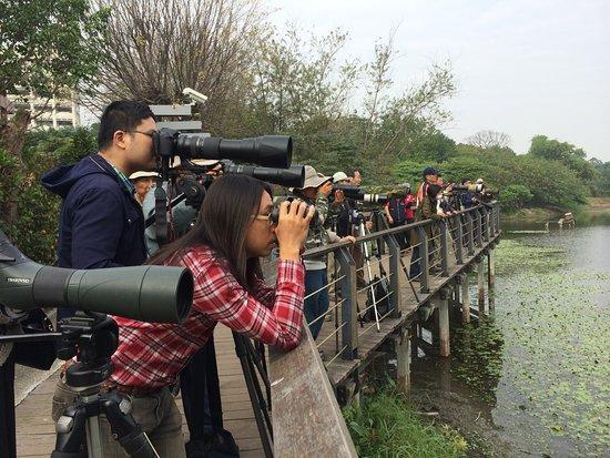 鸟松湿地公园