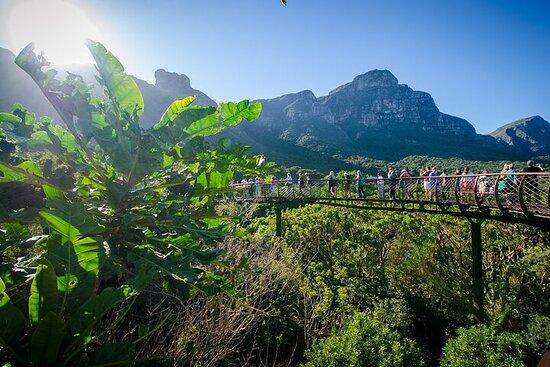 全日城市和Kirstenbosch花園