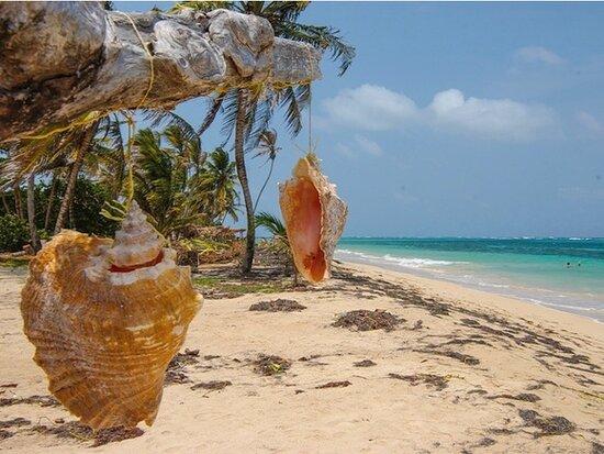 Corn Islands, Nicaragua: Corn Island 56