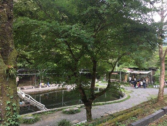 Yozawa Fishing Land