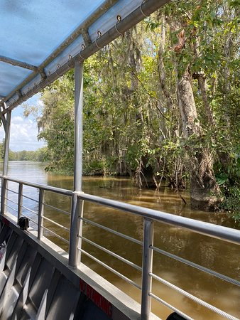 Best water (swamp tour ever)
