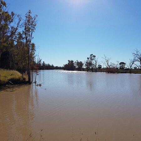 Condamine, Austrálie: Caliguel Lagoon