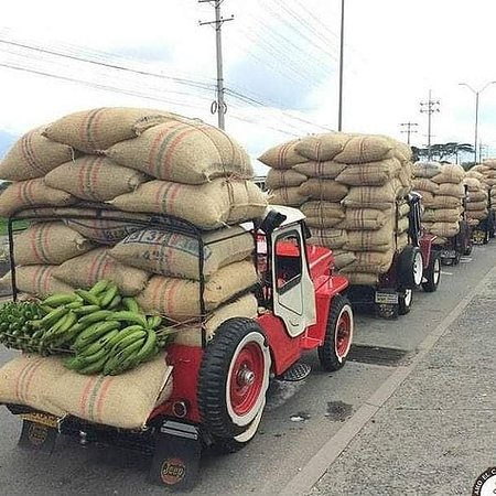 Genova, Kolumbien: Jeep Willys. It is one of the main means where Aromagenoves coffee is transported in the Andes mountains.