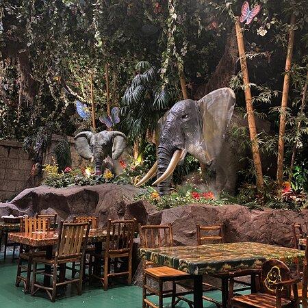 ジャングルカフェ