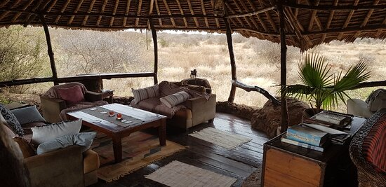 lounge at water hole