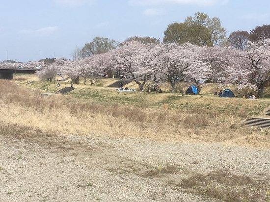 Shinonome Park
