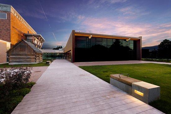 Museum of Surrey