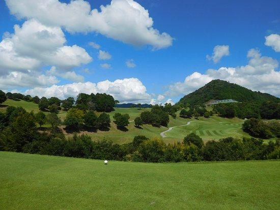 Green Feel Golf Club