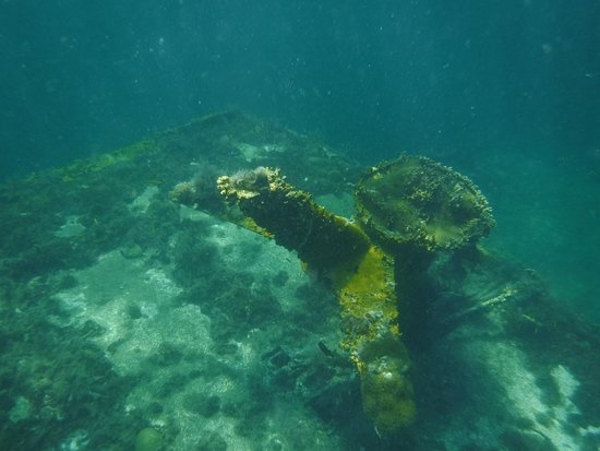 """Gwadaboat: petite plongée sur l'épave """"LA MARIA""""....photo de l'antenne"""