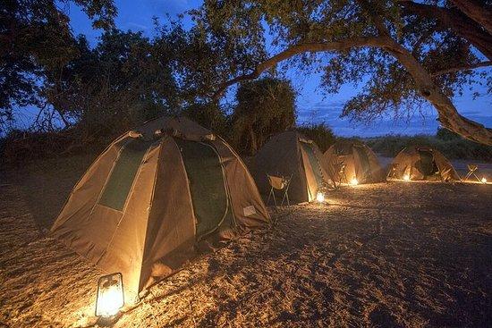 2 Night 3 Day Chobe Safari ex...
