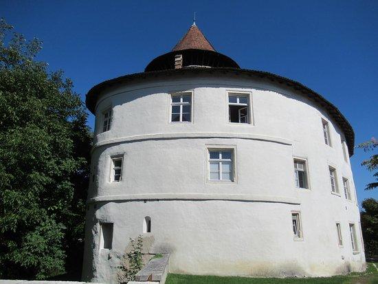 Schloss Zwingen BL