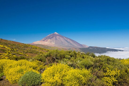 Vimotions Tenerife