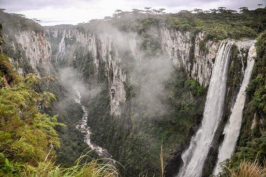 Agência da Colina Eco-turismo