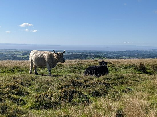 Cwmcarn, UK: You can see to Cardiff, the Severn estuary and Pen-y-fan at the top of Twmbarlwm