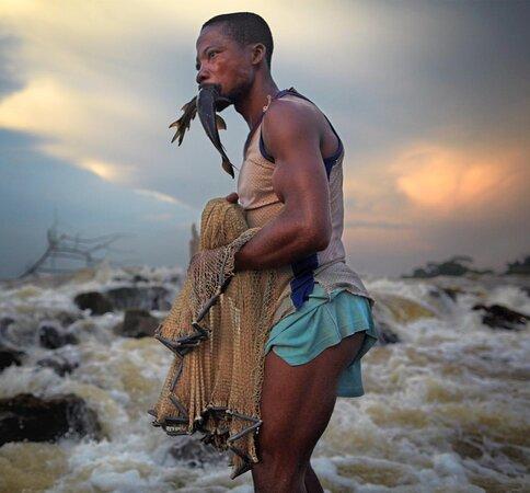 Republikken Kongo: Congo 43