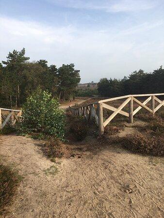 Mooie plek om te wandelen, fietsen, mountainbiken, zelf een rolstoelpad ongeveer een kilometer)