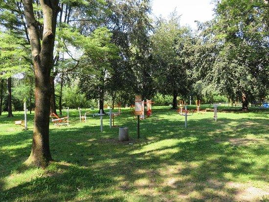 Rogoznik Park
