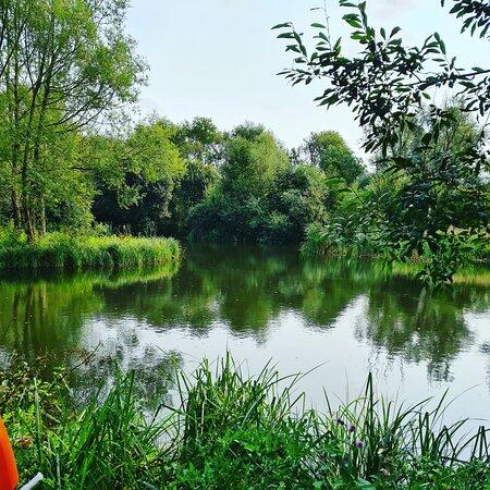 Cretingham, UK: The lake at The Shack
