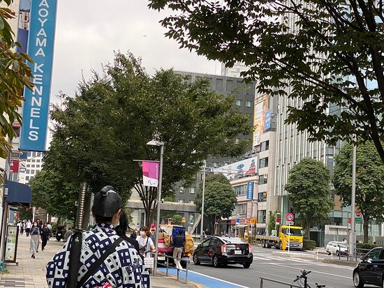 Aoyama Street
