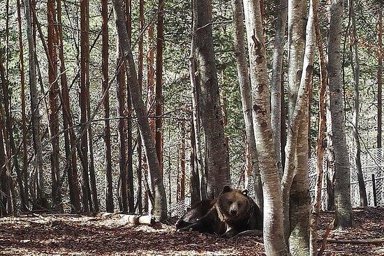 Eco Park Geranea Self-Guided
