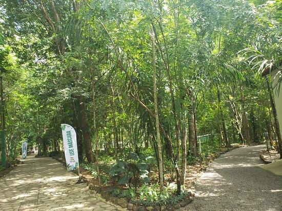 Bioparque Municipal de Macapa