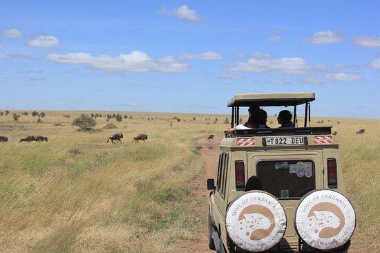 Tours Tanzania