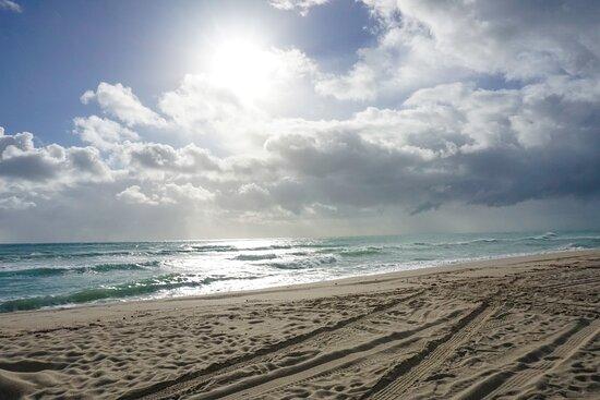 south beach (miami beach): aggiornato 2020 - tutto quello
