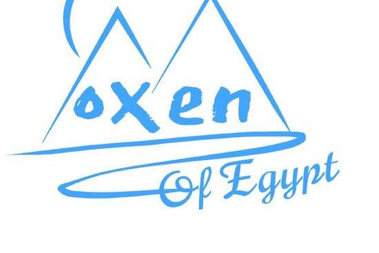 Oxen of Egypt Tours
